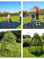 Building a living willow dome