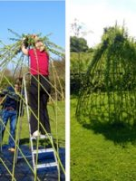 living-willow-dome-2