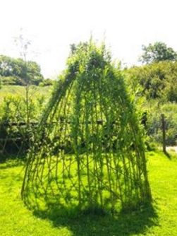 living-willow-dome