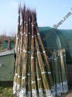 salix-hybrid-rods-2-0m