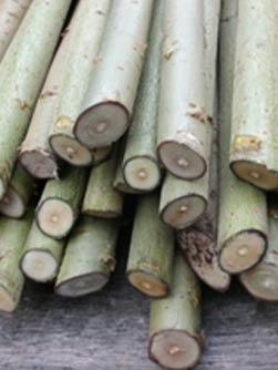 1-biomass-cuttings