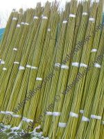 willow-sticks