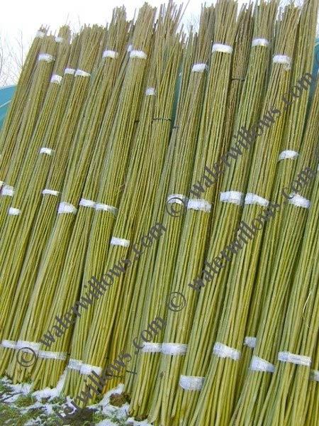 willow-sticks