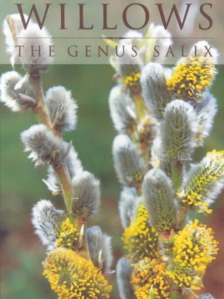 willows-genus-salix