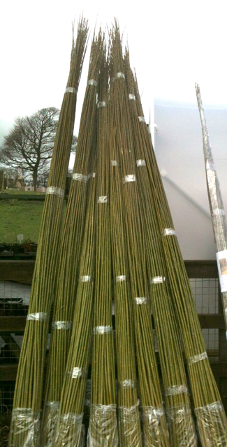 Willow Rods